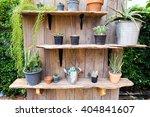 cactus in pot in cactus garden . | Shutterstock . vector #404841607