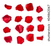 set of 16 red rose petals on... | Shutterstock . vector #404862067