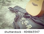 Guitar And Coins In The Bag. ...