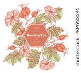 vector hand drawn rosehip tea... | Shutterstock .eps vector #404933245