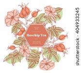 vector hand drawn rosehip tea... | Shutterstock .eps vector #404933245