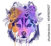 husky hippie and flowers. dog... | Shutterstock . vector #404985907