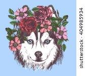 husky hippie and flowers. dog... | Shutterstock .eps vector #404985934