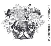 portrait of a french bulldog... | Shutterstock .eps vector #404988244