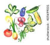 watercolor vegetable... | Shutterstock . vector #405699031
