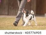 Stock photo perfect footwork 405776905