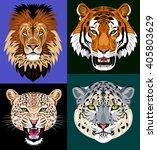 set portraits wild predators  ...   Shutterstock .eps vector #405803629