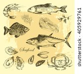vector hand drawn seafood set   ... | Shutterstock .eps vector #405929761