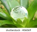 A Crystal Globe Inside A Plant...