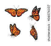 butterfly  monarch butterfly ... | Shutterstock .eps vector #406076107