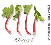 Fresh Picked Organic Rhubarb...