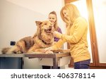Stock photo veterinary doctor checking dog heart with medical tool owner comforting the animal 406378114
