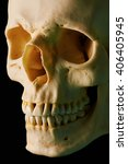 Small photo of Cranial Bone (Short lighting, green cast)