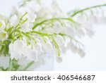 lily of the valley | Shutterstock . vector #406546687