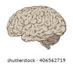 hand drawn line art... | Shutterstock .eps vector #406562719