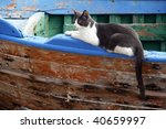 Cat Lying On An Old Boat In...
