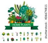 Florist Shop.plants Compositio...