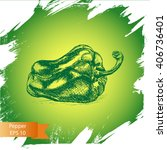 vector background sketch pepper.... | Shutterstock .eps vector #406736401