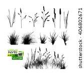 grass set. vector | Shutterstock .eps vector #406802671