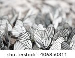 black and white butterflies... | Shutterstock . vector #406850311