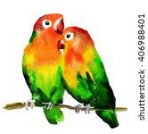 watercolor birds lovebirds ... | Shutterstock . vector #406988401