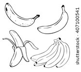 vector set of line art  bananas.... | Shutterstock .eps vector #407100541