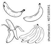 vector set of line art  bananas.... | Shutterstock .eps vector #407100541