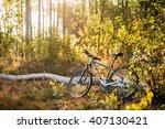 gomel  belarus   august 15 ... | Shutterstock . vector #407130421