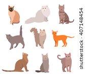 Cat Big Set. Beautiful Cartoon...