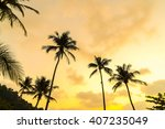 silhouette palm tree on the... | Shutterstock . vector #407235049
