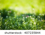 spring floral background on a... | Shutterstock . vector #407235844