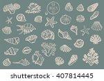 shell undersea world vector...   Shutterstock .eps vector #407814445