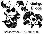 set of plant pictograms  ginkgo ... | Shutterstock .eps vector #407817181