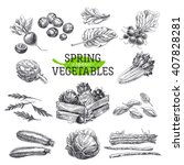 vector hand drawn illustration... | Shutterstock .eps vector #407828281