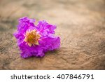 Small photo of Purple flowers, Queen's Flower, space rock.