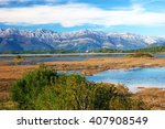 nature reserve of tivat | Shutterstock . vector #407908549