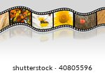 autumn film strip | Shutterstock . vector #40805596