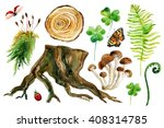 Forest Watercolor Set Isolated...