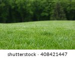 lawn with green grass. field of ... | Shutterstock . vector #408421447