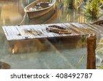 Alligator On Wooden Dock In...