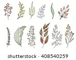 foliage  watercolor and ink...   Shutterstock . vector #408540259