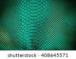 close up of green luxury snake... | Shutterstock . vector #408645571