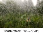 Dew Covered Spiderweb With An...