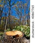 eco.. what  | Shutterstock . vector #40867765