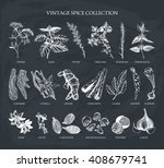 Vector Set Of Hand Drawn Spice...