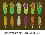 Types Of Corns  Various Of...