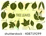 pictograms set  tree leaves ... | Shutterstock .eps vector #408719299