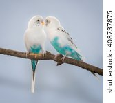 Pair Of Turquoise And White...