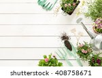 gardening tools  flowers in... | Shutterstock . vector #408758671