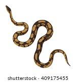 brown python snake vector... | Shutterstock .eps vector #409175455